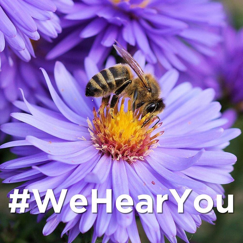 #WeHearYou
